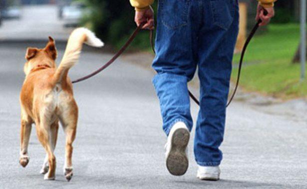 Padre mata a su hijo en una discusión por sacar el perro a pasear