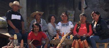 Familia Huerta Baltazar,  promotora de los  maíces multicolor