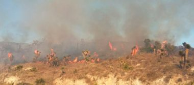 Autoridades ejidales buscan prevenir  incendios en Tequexquitla