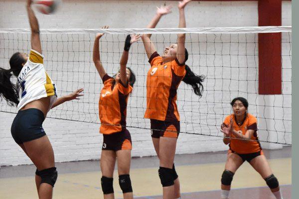 Garzas de la UAT se desinflan en el voleibol