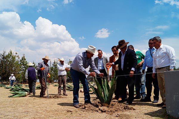 Dona Rancho San Isidro 300 plantas a UAT Calpulalpan