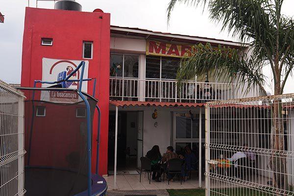 Disfruta lo mejor de los mariscos y la música en vivo en La Guacamaya