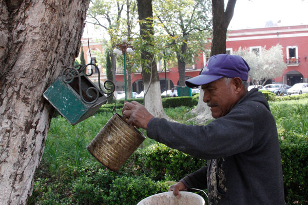 Don Francisco Palacios es el encargado de alimentar y proteger a mamíferos roedores que dan vida al parque de la ciudad capital. / Tomás BAÑOS