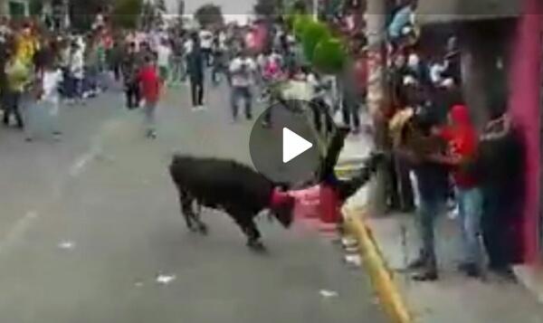 """[Video] Falla seguridad y servicio médico durante """"Ixtencada"""""""