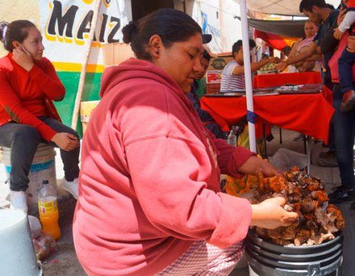 Genera recolección de hongos ingresos en comunidades rurales