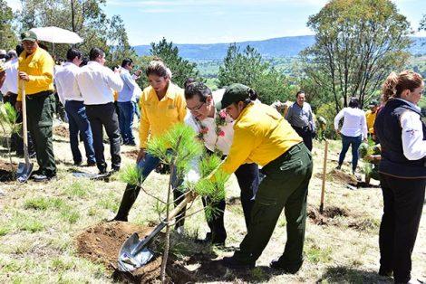 Al final del acto protocolario autoridades y brigadistas se trasladaron a sembrar varias decenas de árboles en la zona de Xochitécatl. / Héctor LORENZO