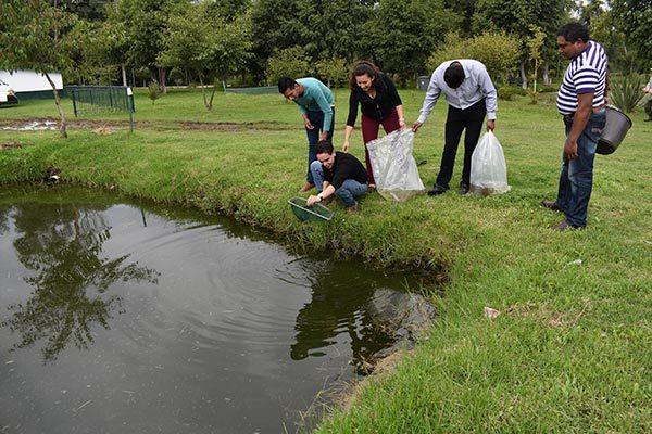 """Siembran carpa en Parque Ecológico """"Los Ladrillos"""" de Zacatelco"""