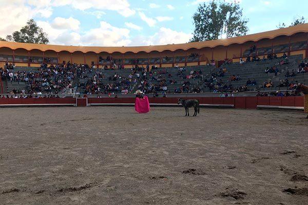 Inicia primera temporada de romerías taurinas