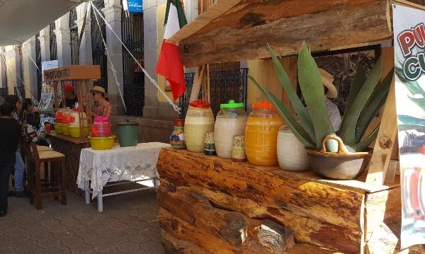 Inicia el Sexto Festival del Pulque en Tlaxco