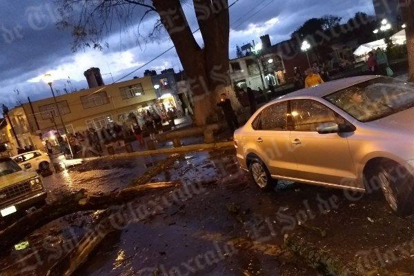 Lluvia provoca caída de enorme tronco contra vehículo de reciente modelo en Chiautempan