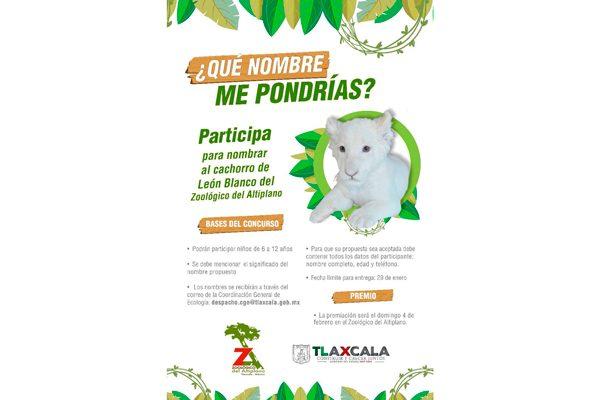 Invita CGE a infantes tlaxcaltecas a concurso del Zoológico del Altiplano