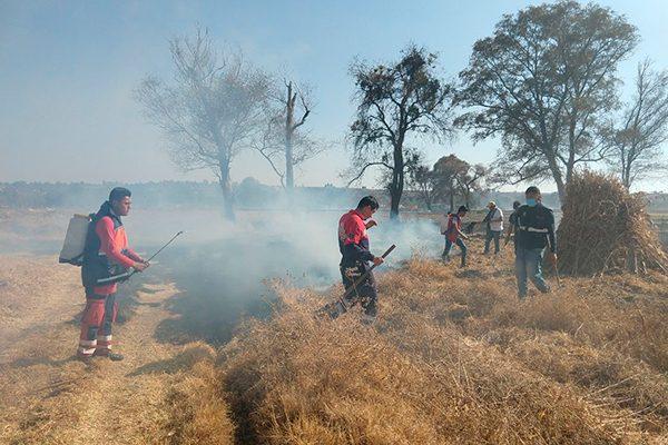 Consume el fuego unas 15 hectáreas de cosechas en Panotla