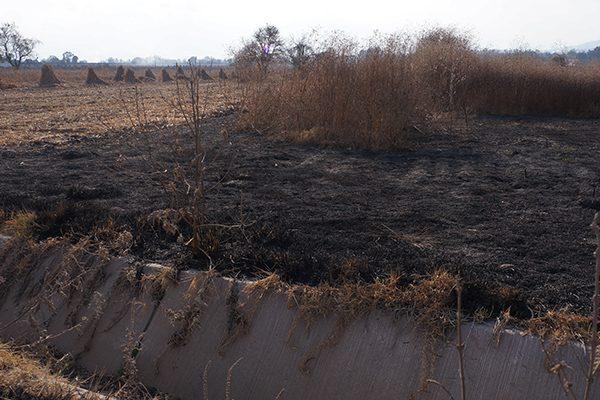 Campesinos piden apoyo a comunas para controlar la quema de pastizales
