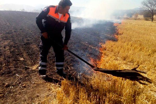 Sofocan Bomberos y PC  30 incendios de pastizales en Calpulalpan