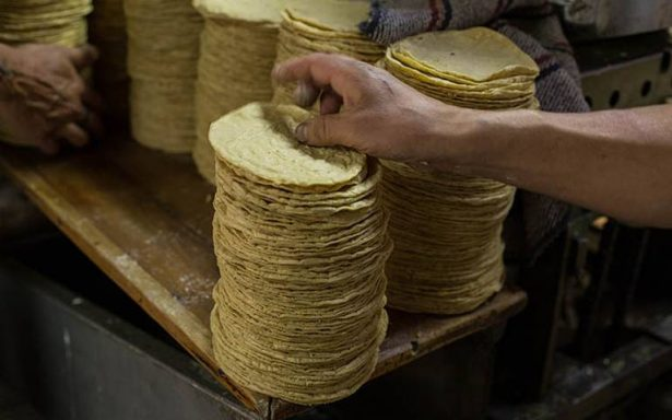 Profeco advierte que no tolerará aumento injustificado de tortilla