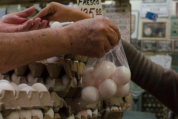 Baja 25% la producción de huevo en la entidad