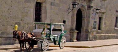 "Calandrias sustituirán a caballos con diseño ""Mexicánicos"""