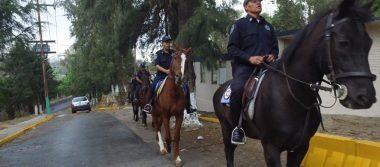Refuerzan seguridad en zona boscosa y espacios públicos de Naucalpan