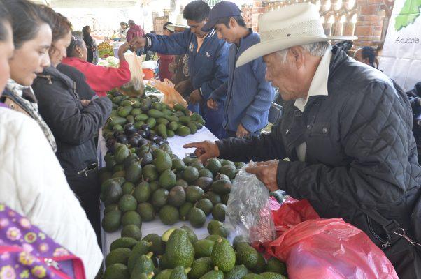 Profeco emite 90 requerimientos a productores y distribuidores  de aguacate y limón