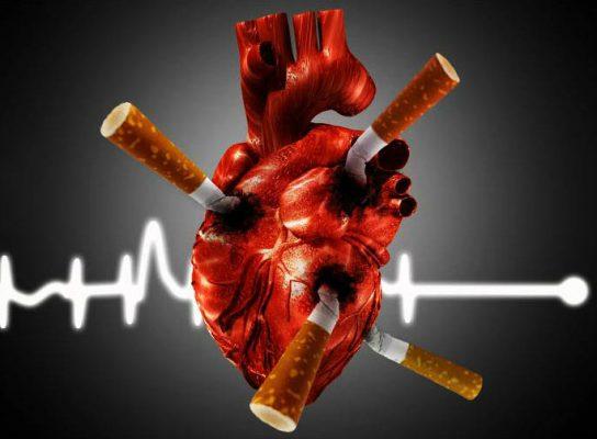 enfermedades cardiovasculares por tabaco