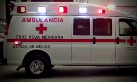 Agreden perros a tres personas en Totoltepec