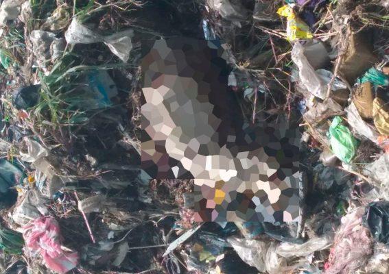 Encuentran cadáver entre la basura