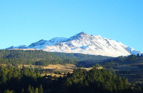 Proponen actualizar censo de flora y fauna en el Nevado