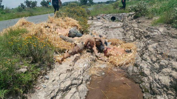 Encuentran cuatro cadáveres en Tepetlaoxtoc, Edomex