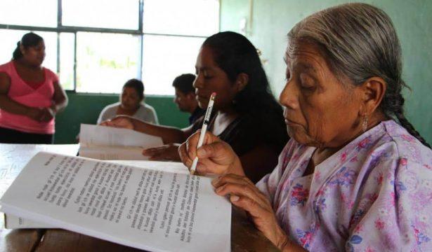 Analfabetismo en la entidad es de 3.3%: INEA Edoméx