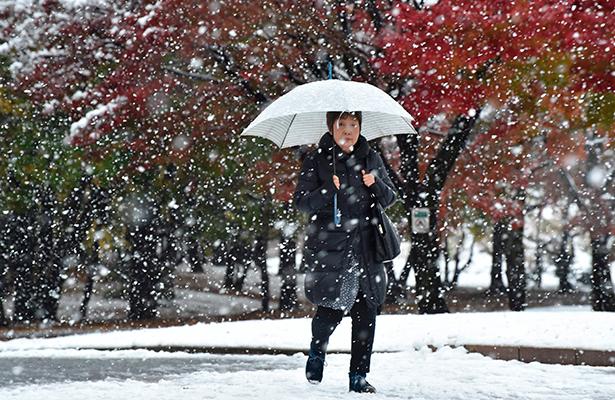 Se adelantó 40 días la nieve en Tokio