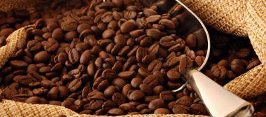 Tendrá oportunidades café chiapanecio con TLCAN
