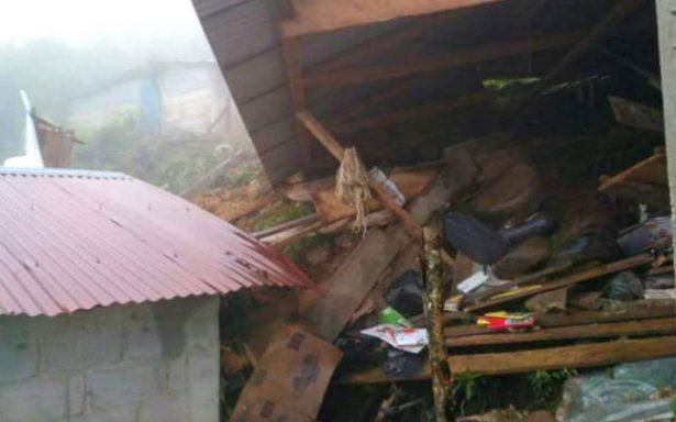 Mueren cinco niños por deslizamiento de tierra en Chiapas
