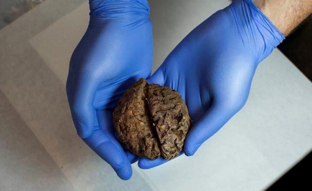 Descubren fosa de la Guerra Civil con 45 cerebros conservados, en España