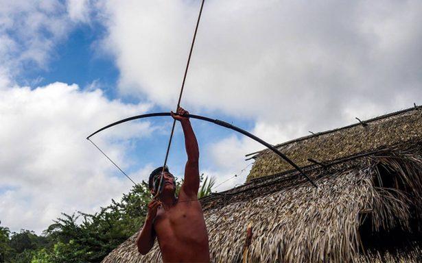 Aumenta la agresión por conflictos ambientales en Brasil