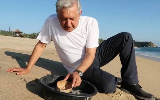 Es preferible hablar de las tortuguitas, dice AMLO sobre nuevo titular de la SEP