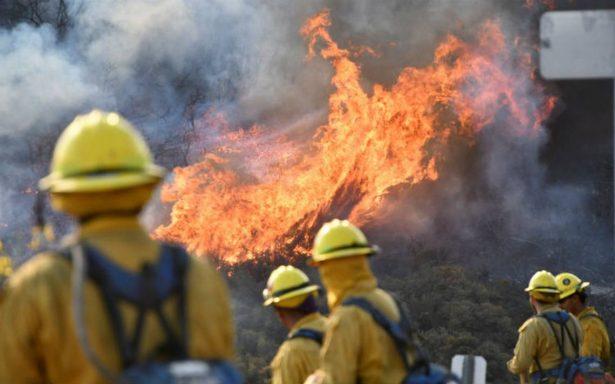 Un muerto, 500 casas destruidas y miles de evacuados, dejan incendios en California