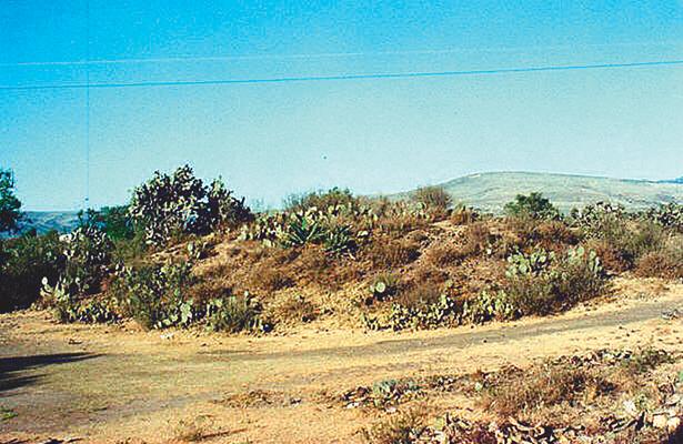 Hallan ruinas prehispánicas en Zazacuala