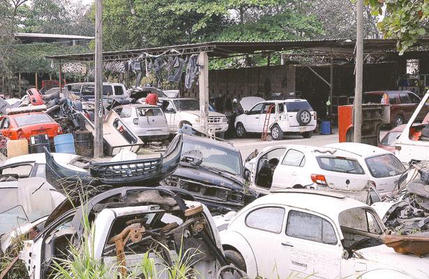 Deshuesaderos deberán normarse; 46 establecimientos en el municipio