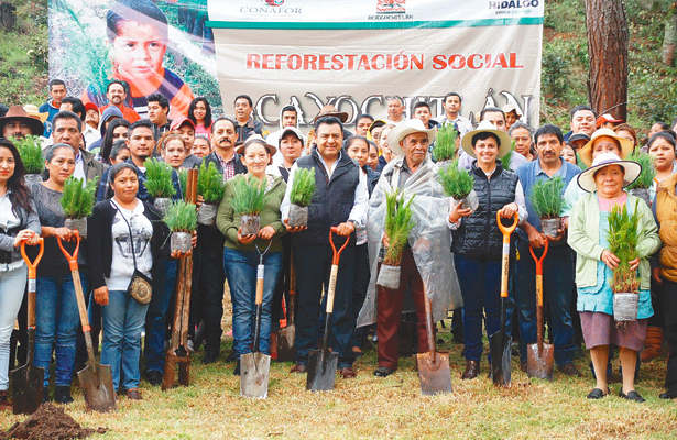 Libera CONAFOR tres mil arbolitos para reforestar