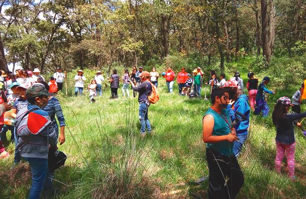 Reforestación en La Paila, Singuilucan