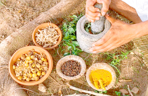 Intercambio de Experiencias entre Medicina Tradicional e Institucional, en la Floresta