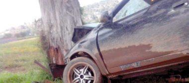 Chocan vs árbol; el  copiloto sale herido