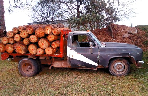 Aseguran camioneta cargada con trozas, en bosque de Acaxochitlán