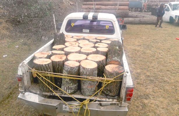 Aseguran madera y 2 camionetas