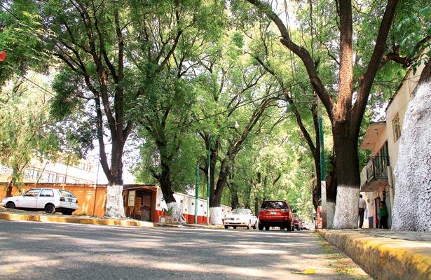 Pulmón de Tulancingo, la Calzada 5 de Mayo