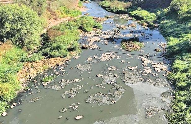 Lactosuero provoca grave contaminación