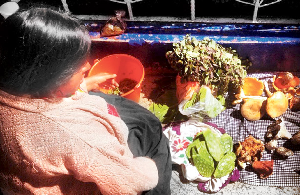 Una tradición vender hongos; de Acaxochitlán para la región