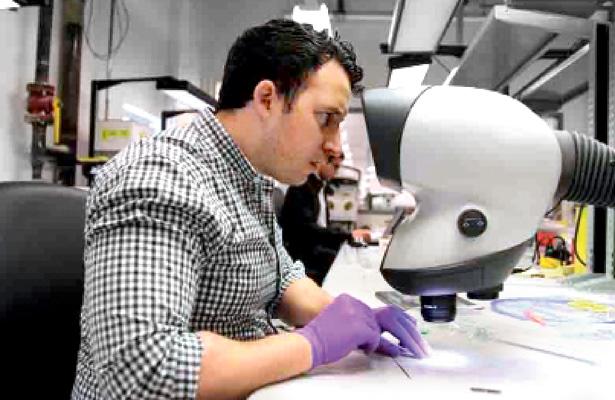 Nanomédico, una carrera del futuro
