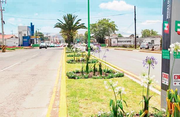 Nueva imagen a camellón del bulevar Miguel Hidalgo