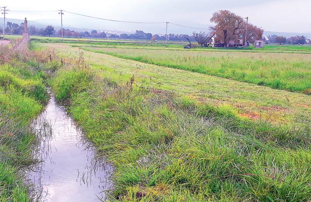 Indispensables los canales de riego cuando falta lluvia